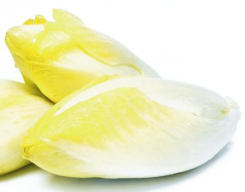 http://glengarry247.com/glengarry247/sites/default/files/field/image/FB-Belgian-endive.jpg